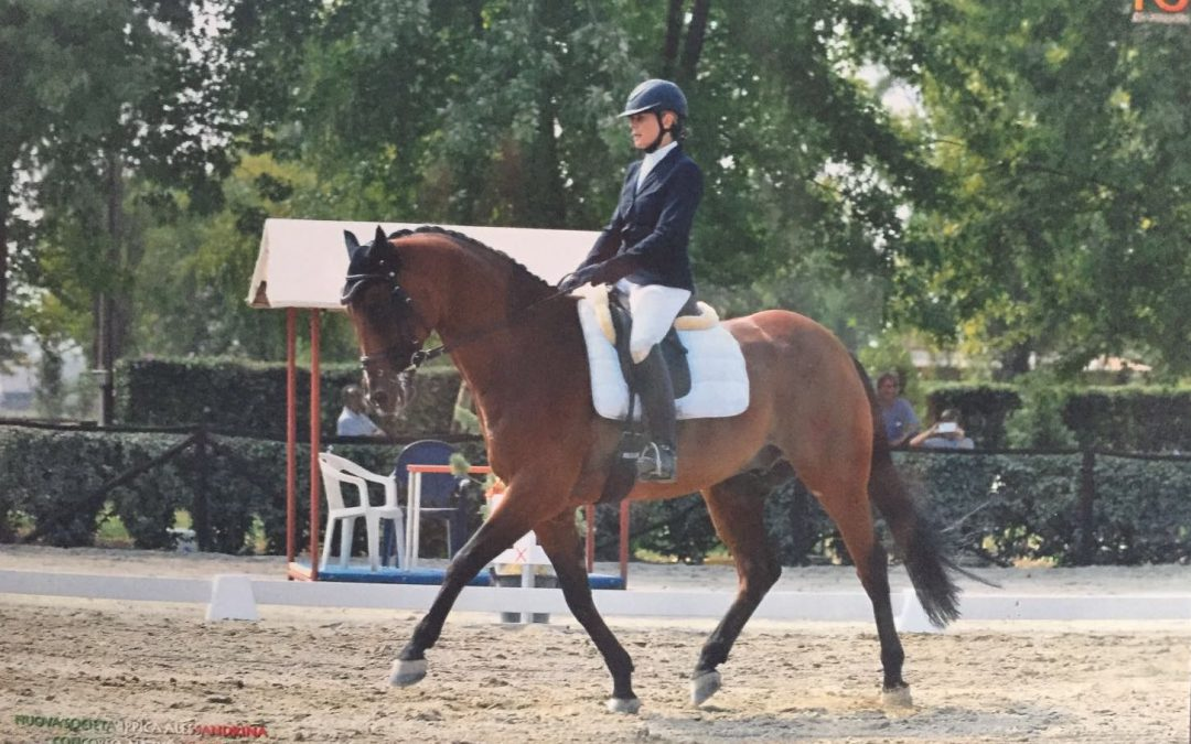 WILLEM AND ELENA WINNING THEIR FIRST TESTS – ON BOTH DAYS – THANK YOU JUDY!!!!!