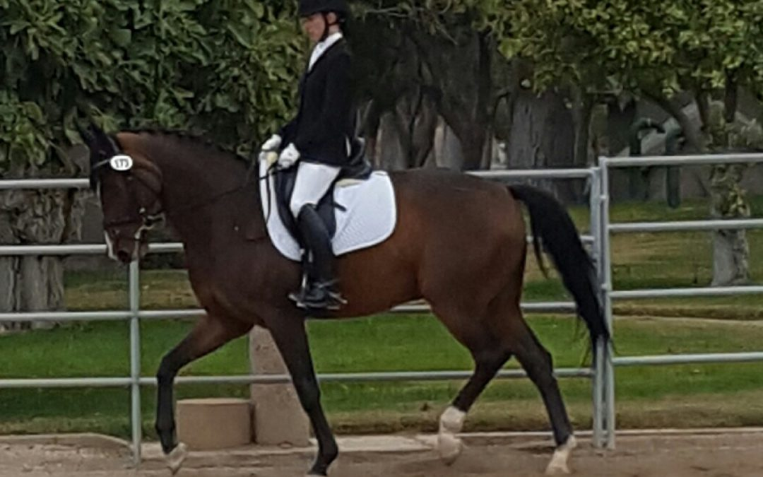 Edinho and Joan first show 3 Ed level